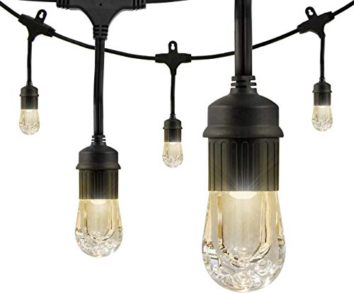 Enbrighten Classic LED Cafe String Lights, Black, 48 Foot Length, 24 Impact Resistant Lifetime...