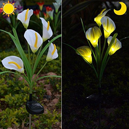 Chasgo Solar Decorative Garden Stake Light Outdoor, Led Lighting Calla Lily Flower Solar Graden...